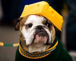 Green Bay Packers Defeat the