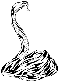 tattoo designs snakes
