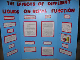 science fairs projects