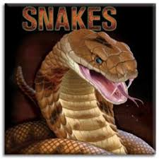 snakes book