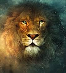 chronicles of narnia lion