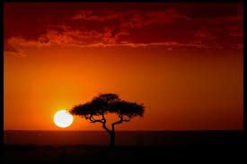 africa vacation