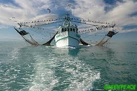 produccion pesquera