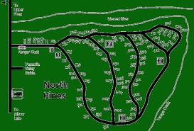 north pines