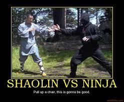 shaolin ninja