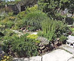 dry gardening