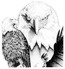 eagle heads