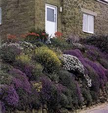 rock wall gardens