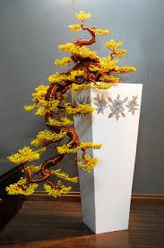 mai vang bonsai