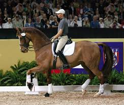 olympic dressage riders