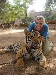 photographs of tigers