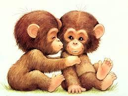 chimpanzee pics