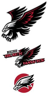 hawk tattoo designs