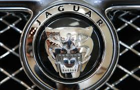 jaguar grill