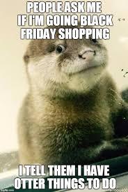 Meme Maker All The Things - derp otter meme generator imgflip