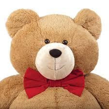 bear wear vermont teddy bear company