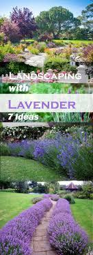 Landscape Garden Ideas Pictures Landscaping With Lavender 7 Garden Design Ideas
