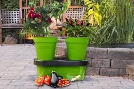 garden pots u0026 planters greenhouse sensation