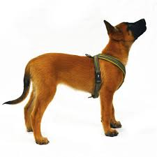 Comfort Flex Dog Harness Leerburg Hurtta Padded Y Harness