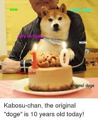 Original Doge Meme - ow rthddv ake wow original doge kabosu chan the original doge is 10