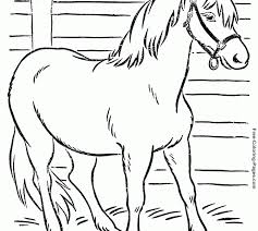 trend free coloring pages horses 62 coloring free
