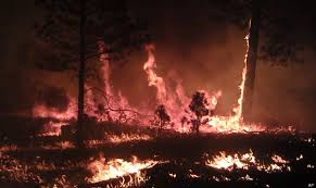 Card Wildfire Alaska by Subarctic Wildfire Activity Is Heating Up In The Yukon Flats Of