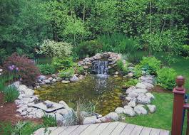 ornamental ponds wynn u0027s landscape u0026 design company
