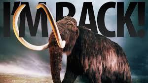 mammoths roaming