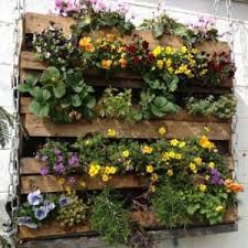 spice rack vertical vegetable garden ideas great vertical