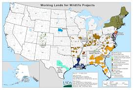 Northeast Map Usa by Working Lands For Wildlife Nrcs