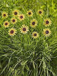 metal flower garden stakes black eyed susan stakes folk art flowers gardener u0027s supply