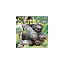 sloths 2017 calendar paperback target