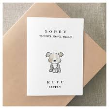 feel better cards dog card thinking of you sorry card thinking of you card