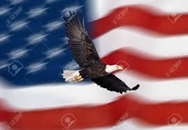Bald Eagle And American Flag Bald Eagle Flying In Front Of The American Flag Stock Photo
