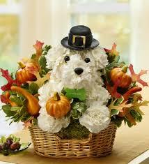 dog flower arrangement thanksgiving flower arrangement deal for dog woof woof