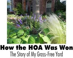 Front Yard Landscaping Without Grass - the hoa was won the story of my grass free yard