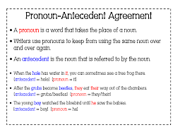 6th grade english with mr t pronoun antecedent agreement part 2