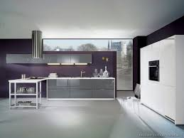 Purple Kitchen Design Kitchen Idea Of The Day Modern Gray Kitchen By Alno Ag With