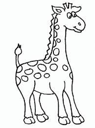 imagenes de jirafas bebes animadas para colorear la chachipedia jirafas para colorear dibujos coloreados para