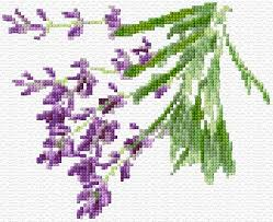 lavender ann u0027s cross stitch patterns