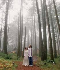 affordable wedding venues in oregon gearing and coughenour walk through the forest to