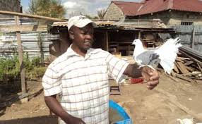 farmer says ornamental bird farming paying daily nation