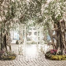 wedding backdrop garden wedding photography backdrop garden vinyl backdrop for photography