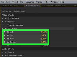 tutorial editing video di adobe premiere how to crop a video in adobe premiere pro 8 steps with pictures