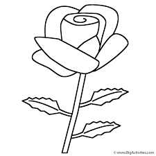 clip art plants coloring pages mycoloring free printable