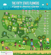 Usa Map With Names by Us Map State Flower Free Printable Map Of The United States