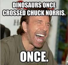 Laughing Face Meme - chuck dinasours humour pinterest chuck norris chuck norris