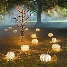 as cores quentes do outono white pumpkin centerpieces pumpkin