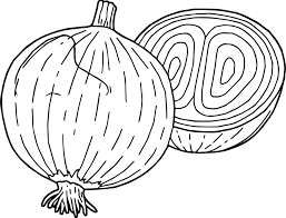 vegetables onion coloring page wecoloringpage