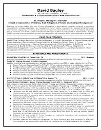 Salesforce Developer Resume Samples by Dbagley Resume 2015
